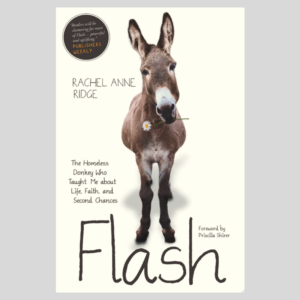 Flash the Donkey book