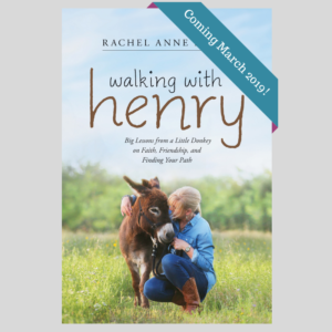 Walking with Henry book