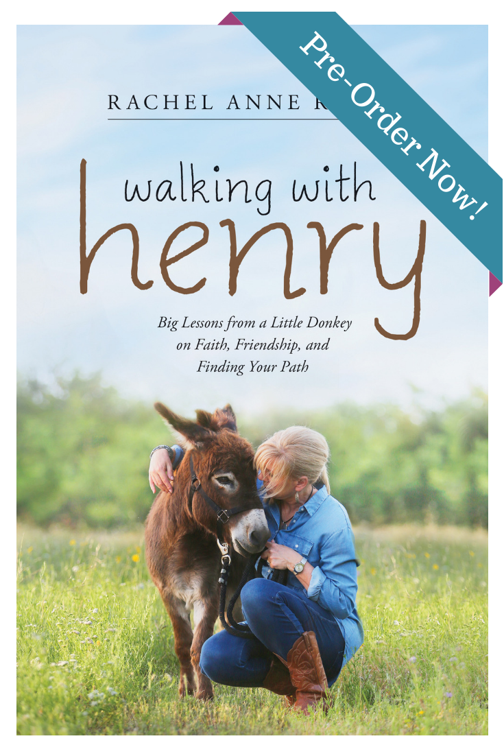 Walking with Henry the Donkey book