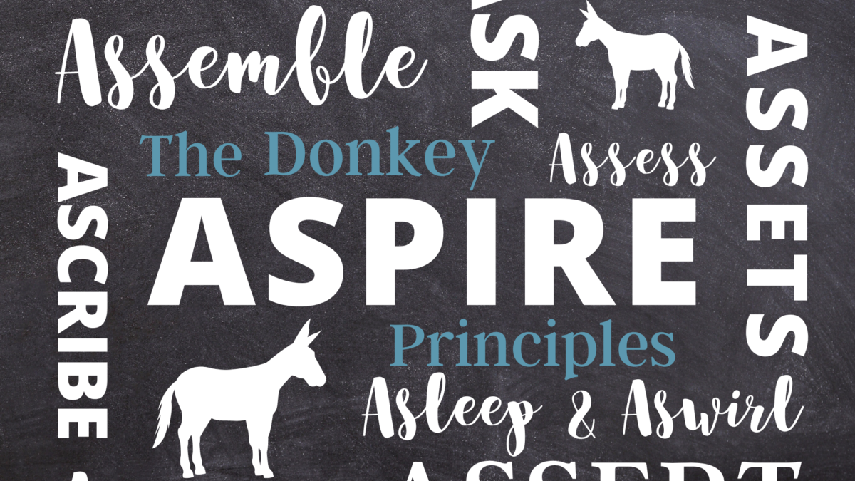 The Donkey Principles
