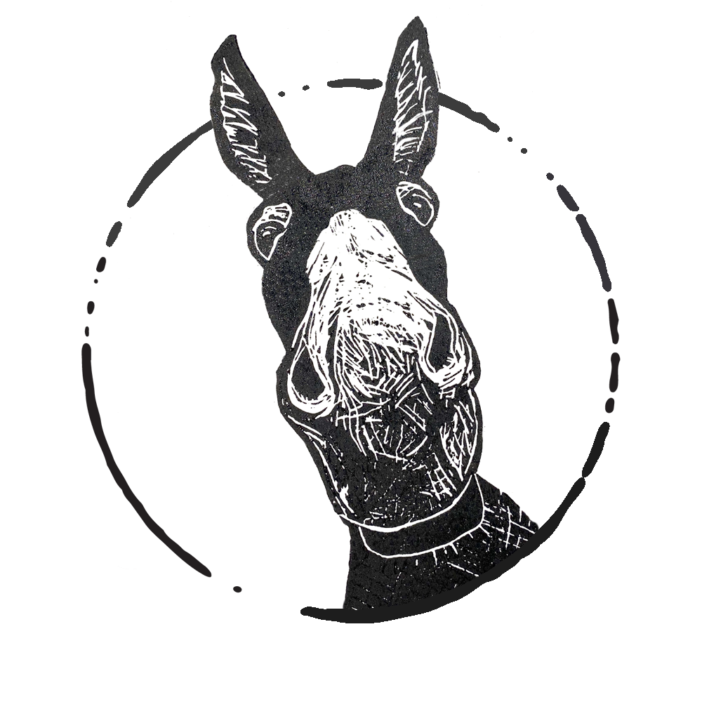 Flash the Donkey logo