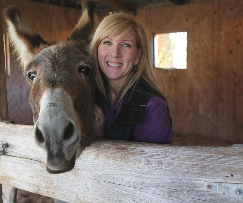 Flash the Donkey and Rachel Ridge