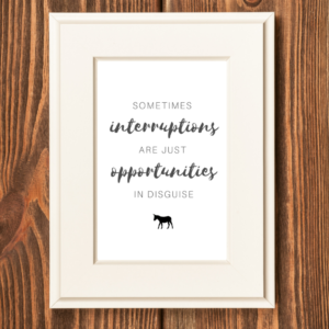 Interruptions are opportunities print