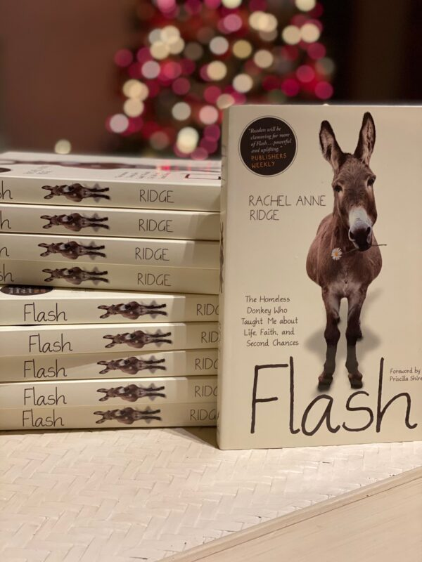 Flash the donkey book